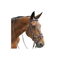 Snaffles & Weymouthbridles
