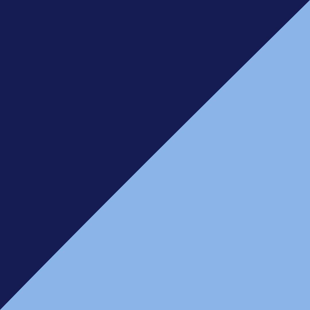 Navy/Sky blue
